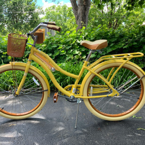 This was the hot item this summer! People couldn't buy a bike fast enough. I was fortunate to find this one. Everyone has turned to simple outdoor activities since so many events have been canceled.